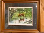 Framed Print - Reflections of a Short Horn Past