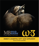 Mad Barn W-3 Oil 4L Jug